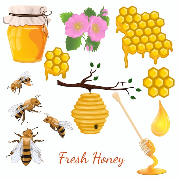 Zestaw Miodu. Zestaw Ikon Pszczół. Izolować Na Białym Tle. Premium Wektorów