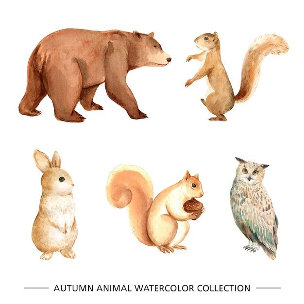 Zestaw na białym tle elementów akwarela zwierząt Darmowych Wektorów