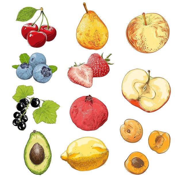 Zestaw owoców i warzyw w kolorze, na białym tle. Premium Wektorów