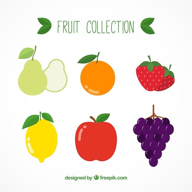Zestaw Owoców Smaczne Darmowych Wektorów