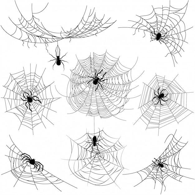 Zestaw pająka o różnych kształtach z czarnymi pająkami na białym tle Premium Wektorów