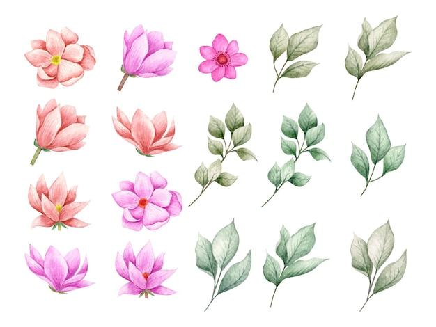 Zestaw Pięknych Kwiatów I Liści Gałęzi Na Kartkę Z życzeniami Premium Wektorów