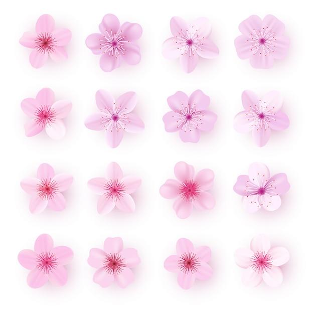 Zestaw realistyczne różowe kwiaty sakury Premium Wektorów