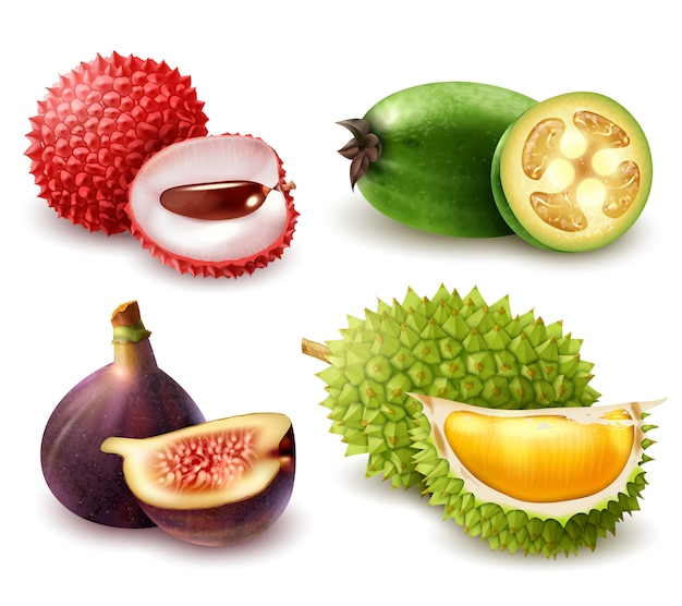 Zestaw realistycznych owoców egzotycznych Darmowych Wektorów
