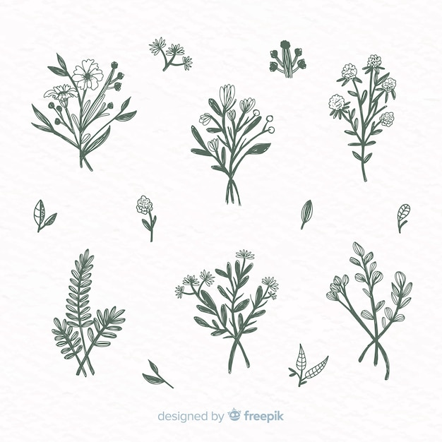Zestaw ręcznie rysowane ozdoby z kwiatów Darmowych Wektorów