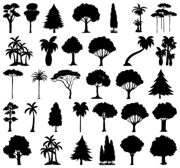 Zestaw Roślin I Drzew Sylwetka Premium Wektorów