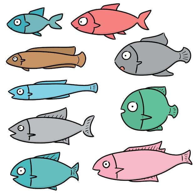Zestaw Ryb Premium Wektorów