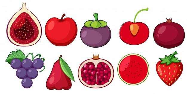 Zestaw świeżych Owoców Premium Wektorów
