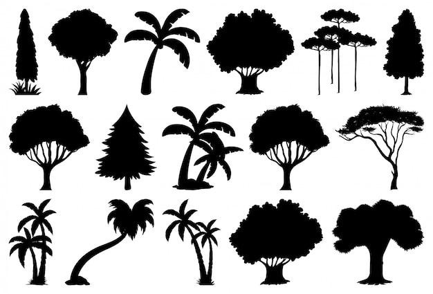 Zestaw Sylwetka Roślin I Drzew Darmowych Wektorów