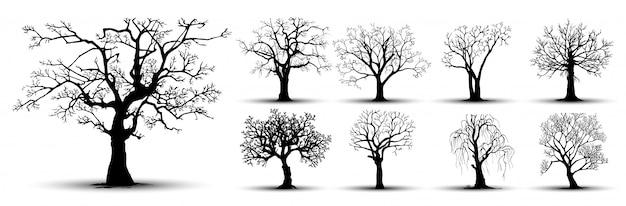 Zestaw Sylwetki Drzew Premium Wektorów