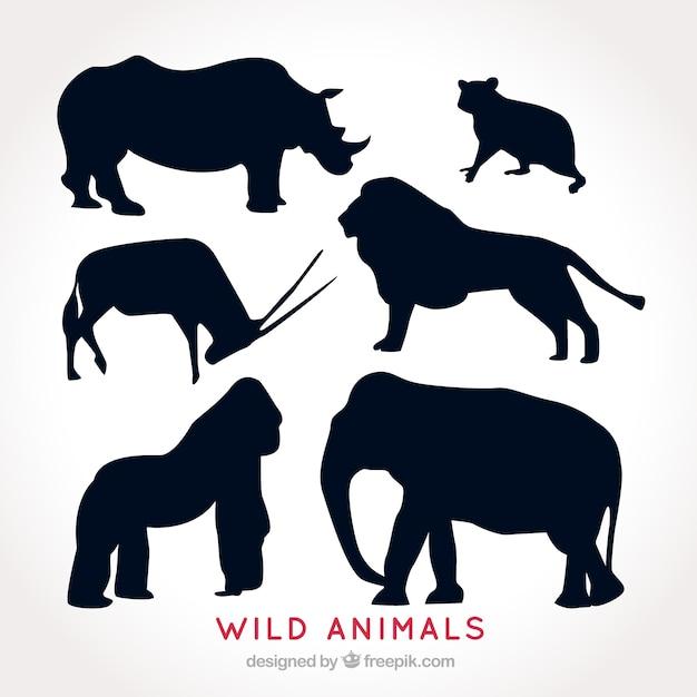 Zestaw sylwetki dzikich zwierząt Darmowych Wektorów