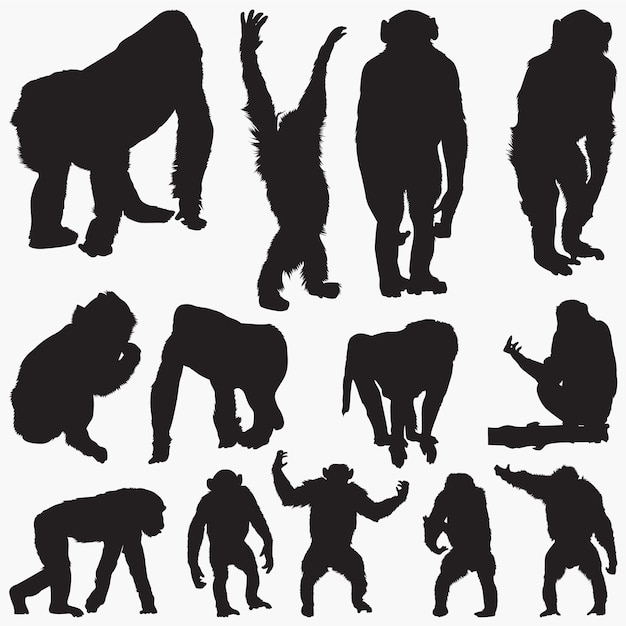 Zestaw sylwetki małpy Premium Wektorów