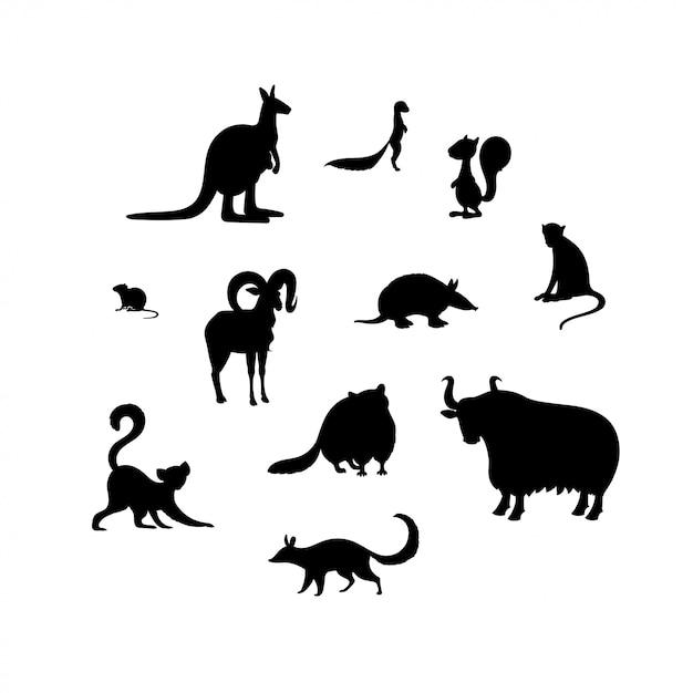 Zestaw sylwetki zwierząt. kangur, kserus, wiewiórka, nornik, urial, pancernik, makak, lemur, szop, jaka, tępak Premium Wektorów