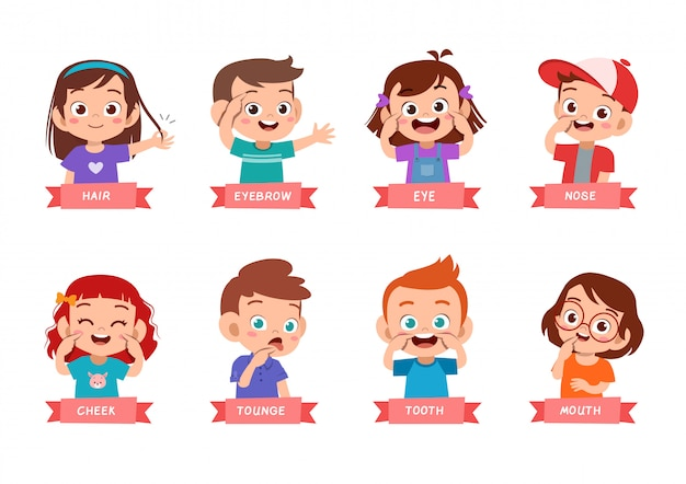 Zestaw Wskazujący Części Ciała Dla Dzieci Premium Wektorów