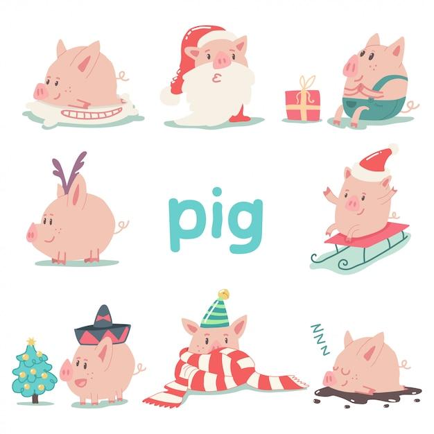 Zestaw Znaków śmieszne Boże Narodzenie świnia Kreskówka Na Białym Tle Symbol Zwierzę 2019 Chiński Nowy Rok. Premium Wektorów
