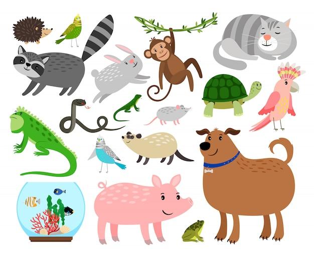 Zestaw zwierząt domowych kreskówek Premium Wektorów