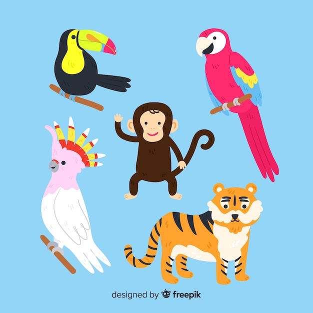 Zestaw Zwierząt Dżungli: Tukan, Papuga, Małpa, Tygrys Darmowych Wektorów