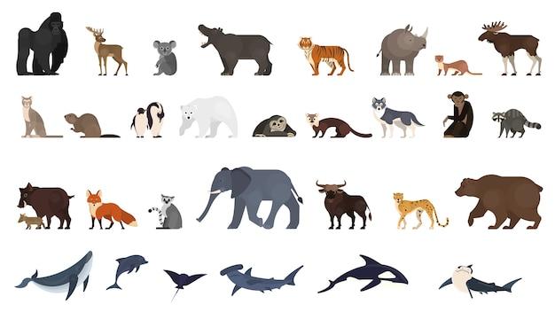 Zestaw Zwierząt. Kolekcja Egzotycznych I Dzikich Zwierząt Premium Wektorów