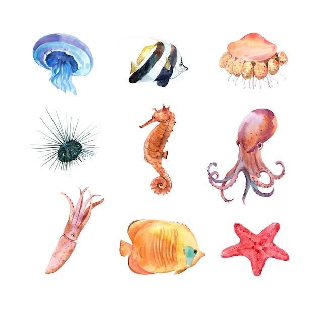 Zestaw Zwierząt Morskich Akwarela Na Białym Tle Darmowych Wektorów