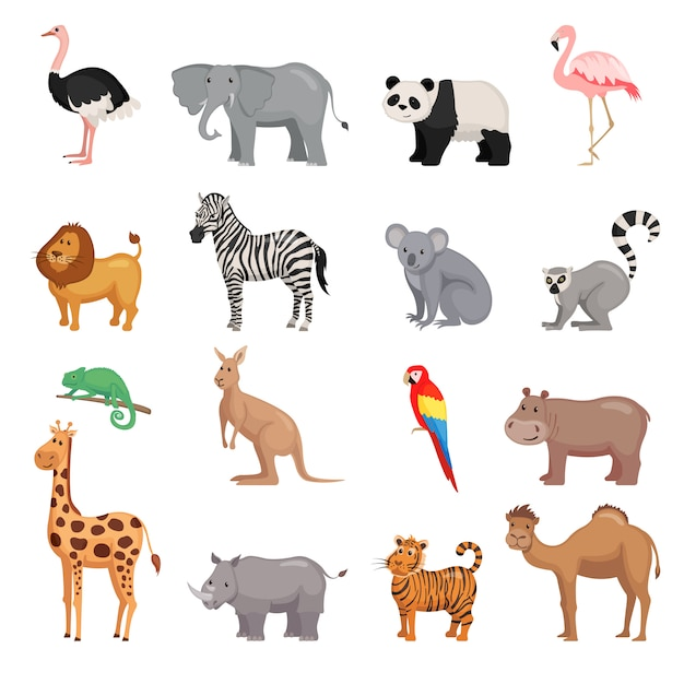 Zestaw Zwierząt Z Zoo Premium Wektorów