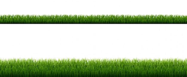 Zielona Trawa Granicy Z Białym Tle Premium Wektorów