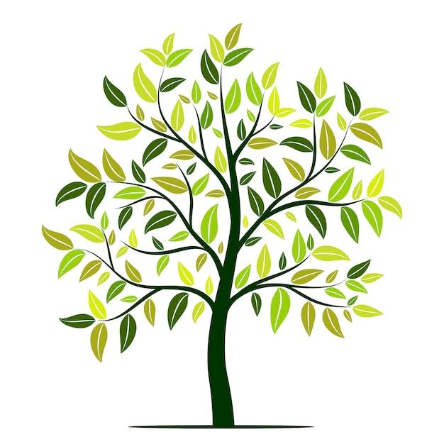 Zielone Drzewo Z Liści Wektor Premium Wektorów