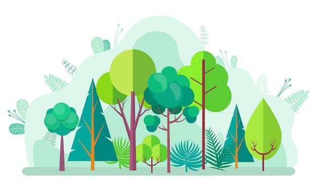 Zielony las z drzewem, jodłami i brzozami Premium Wektorów