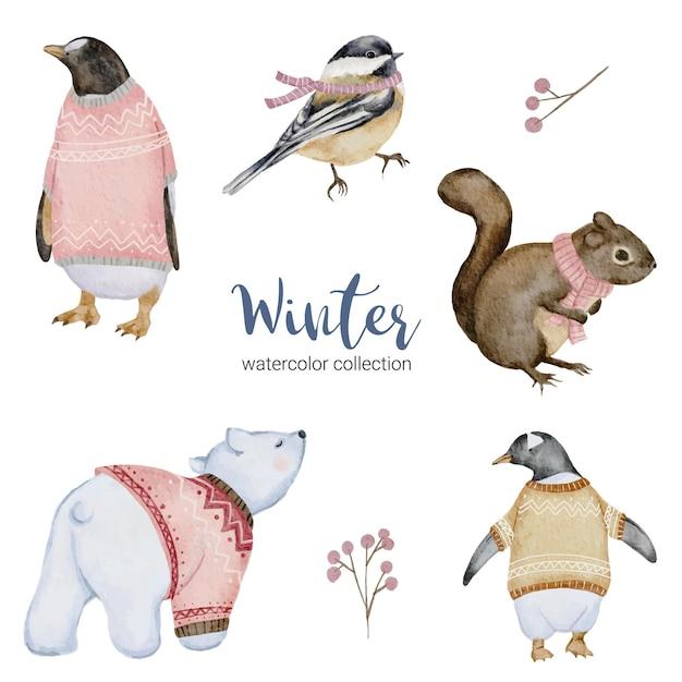 Zimowa Kolekcja Akwareli Z Pingwinem, Wiewiórką, Białym Niedźwiedziem I Ptakiem Darmowych Wektorów