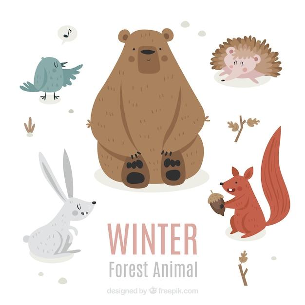 Zimowa Kolekcja Zwierząt W Stylu Płaski Darmowych Wektorów
