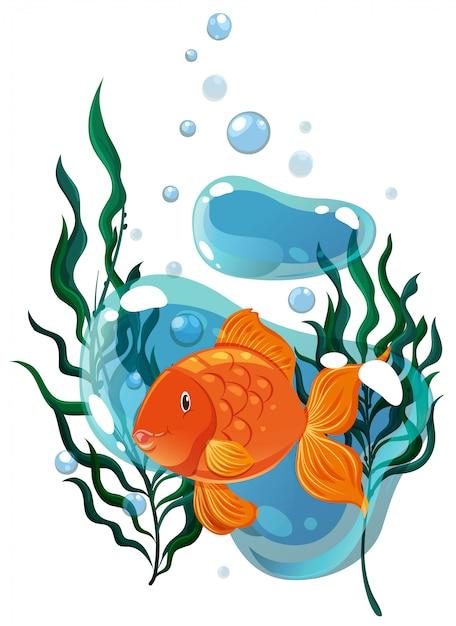 Złota rybka pływająca pod wodą Darmowych Wektorów