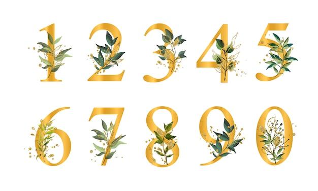 Złote kwieciste liczby z zielonymi liśćmi i złota splatters odizolowywającymi Darmowych Wektorów