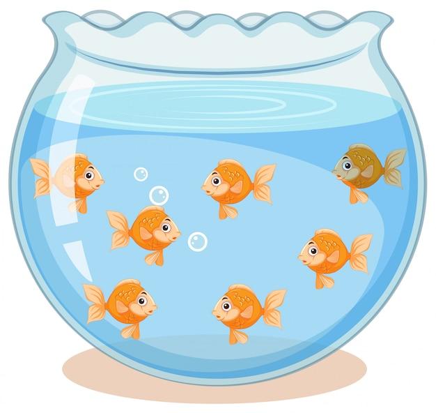 Złote ryby w zbiorniku Darmowych Wektorów