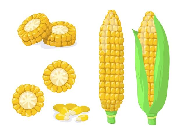 Złoty Lub Złoty Zestaw Elementów Płaskich Do Zbioru Kukurydzy. Kreskówka Kolby Kukurydzy Lub Nasiona, Ziarna Do Kolekcji Ilustracji Wektorowych Na Białym Tle Popcornu. Koncepcja Zdrowej żywności I Warzyw Darmowych Wektorów