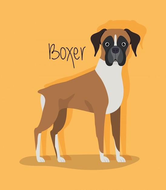 Znak ładny Pies Bokser Premium Wektorów