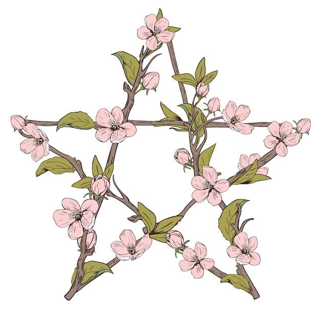 Znak pentagram wykonany z gałęzi z kwitnącego drzewa. ręcznie rysowane botaniczny różowy kwiat na białym tle. ilustracji wektorowych. Premium Wektorów