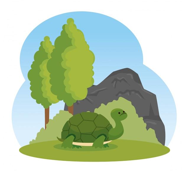 Żółw dzikie zwierzę z drzewami i krzewami Darmowych Wektorów