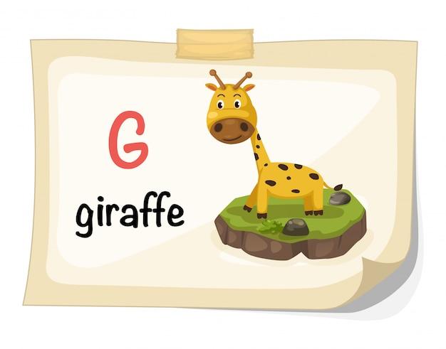 Zwierzęcy abecadło list g dla żyrafy ilustraci wektoru Premium Wektorów