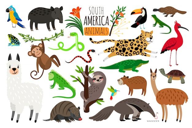 Zwierzęta Ameryki Południowej. Premium Wektorów