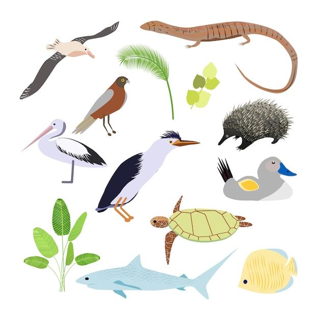 Zwierzęta Australijskie. Ilustracja W Stylu Płaskiej. Główne Symbole Kraju. Premium Wektorów