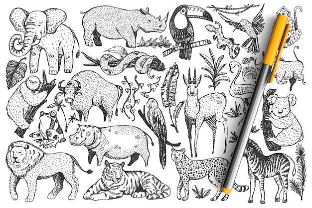 Zwierzęta Doodle Zestaw. Kolekcja Zabawnych Ręcznie Rysowane Słodkie Dzikie Afrykańskie Ssaki Safari Premium Wektorów