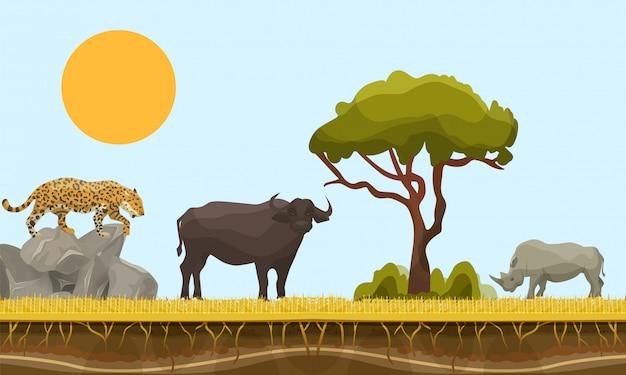 Zwierzęta Sawanny W Afryce Wektor Krajobraz Z Baobabem I Pod Warstwą Powierzchni Ziemi, Byka, Geparda I Nosorożca. Ilustracja Zwierząt Sawanny. Wildlife Of Africa. Premium Wektorów