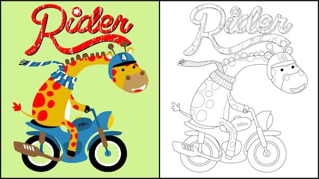 Żyrafa Kreskówka Na Motocyklu Premium Wektorów