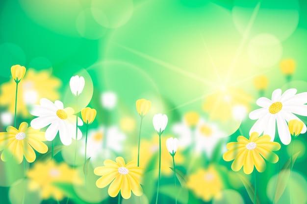 Żywe Zielone Realistyczne Niewyraźne Tło Wiosna Darmowych Wektorów