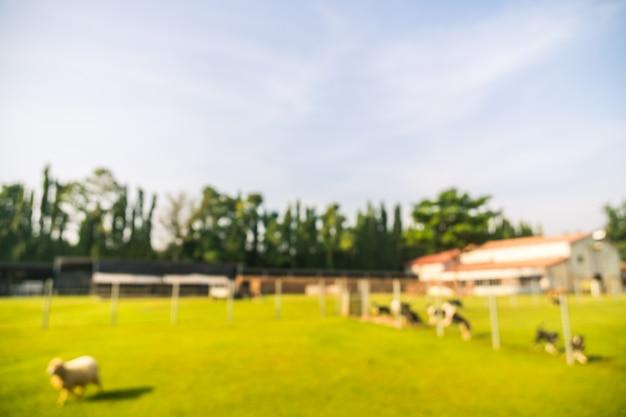 Abstrakcjonistyczny plama park z zielonym polem Darmowe Zdjęcia