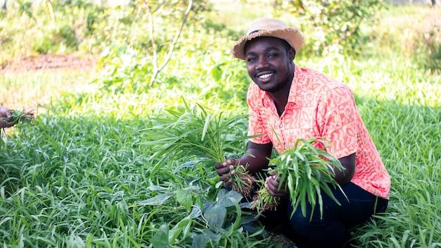 Afrykański Rolnik Zachowuje Poranną Chwałę W Ogrodzie. Premium Zdjęcia