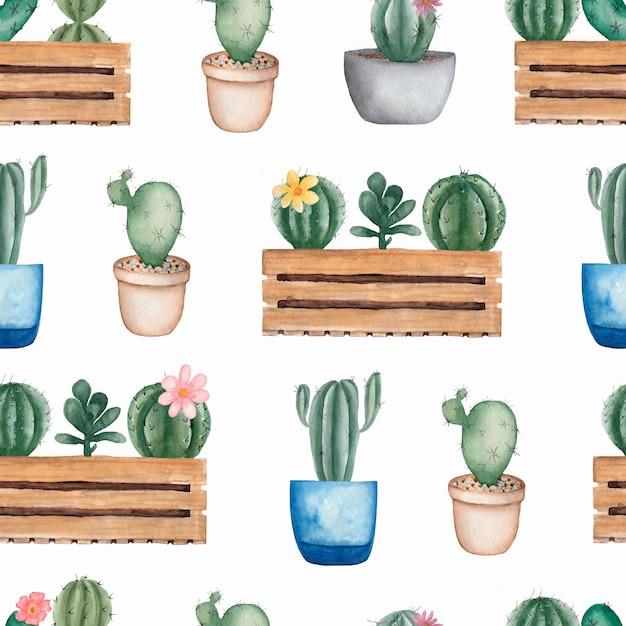 Akwarela bezszwowe kwiatki kaktusów Premium Zdjęcia