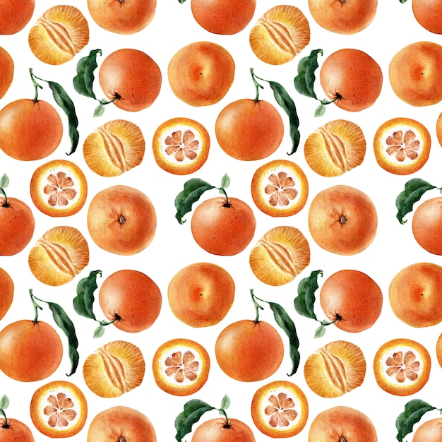 Akwarela Bezszwowe Wzór Owoców, Gałązek I Plastry Mandarynki Premium Zdjęcia