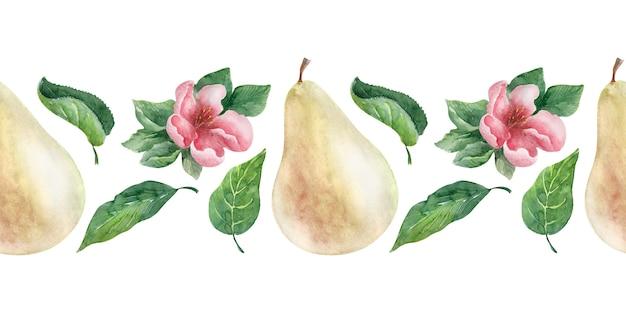 Akwarela Granicy Gruszka. Owoce, Liście I Kwiaty Premium Zdjęcia