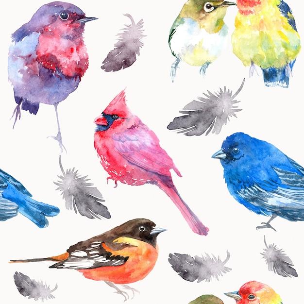 Akwarela Ilustracja Z Ptakiem. Bez Szwu Tekstury Akwarela. Premium Zdjęcia