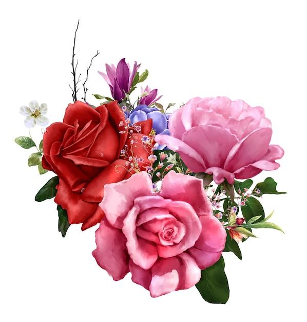 Akwarela Malarstwo Liści I Kwiatów, Róża Na Białym Tle Premium Zdjęcia